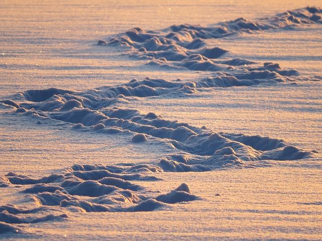Trazos sobre la nieve